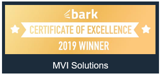 mvi-solutions-award-2019